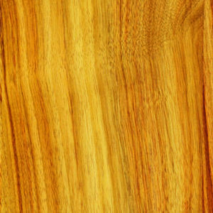 Maine Countertops | The Heritage Wood Collection by Bangor